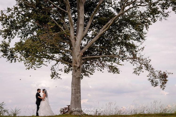 silo point weddings baltimore